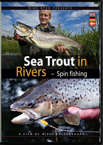 Photo of Seatrouts in Rivers – Spinnfischen auf Meerforellen in Auen und Flüssen