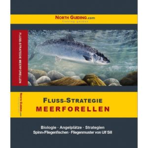 Fluss Strategie Meerforellen