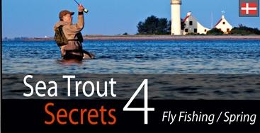 Photo of Geheimnisse der Meerforellen Teil 4 — Fliegenfischen im Frühjahr