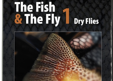 Photo of The Fish & The Fly 1 — Trockenfliegen