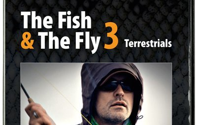 Photo of The fish & the fly 3 – Terrestrials