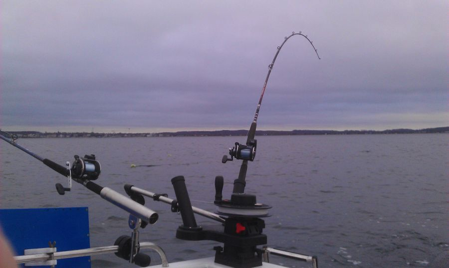Photo of Gemeinschaftsfischen des BAC (Bootsanglerclub)