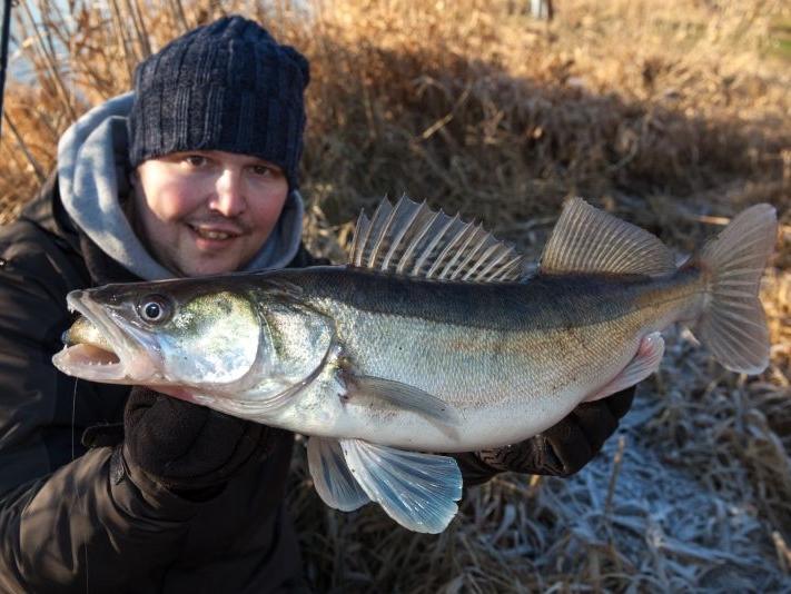 Photo of Aktuelle News für Angler 2015