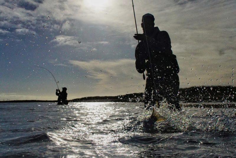 doppeldrill-beim-angeln