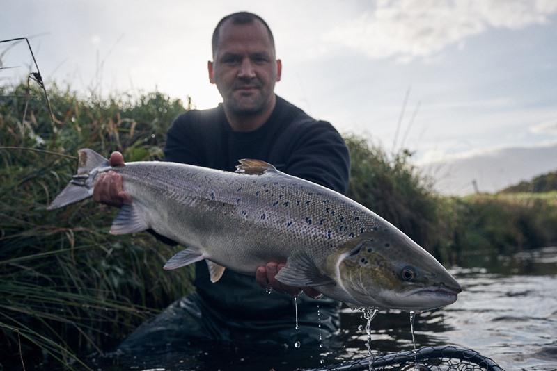 Guiding auf Lachs in DK