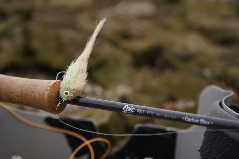 Rute, Streamer - Barsch mit der Fliege