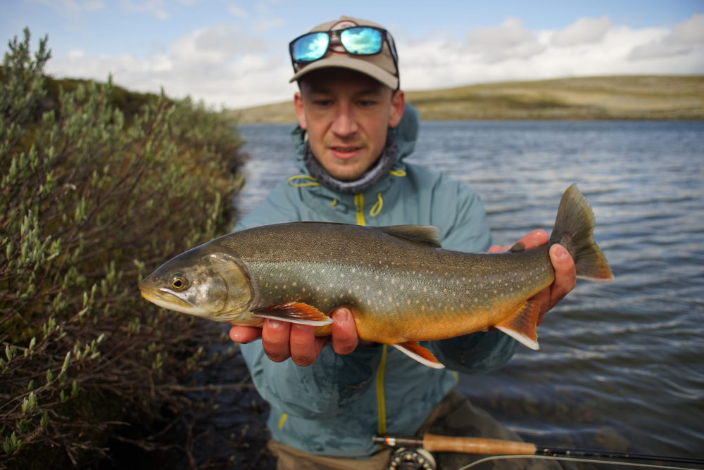 Artic Char in Sweden