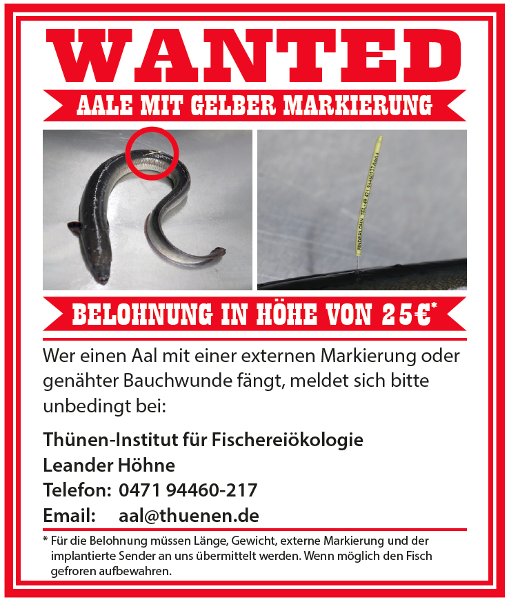 Emsaale - wanted