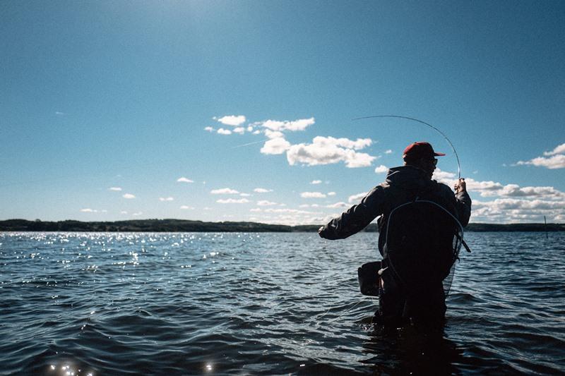 Fliegenfischen auf Meerforellen in Dänemark
