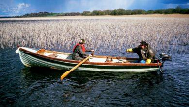 Photo of Eigentlich wollten wir nur in Ruhe angeln